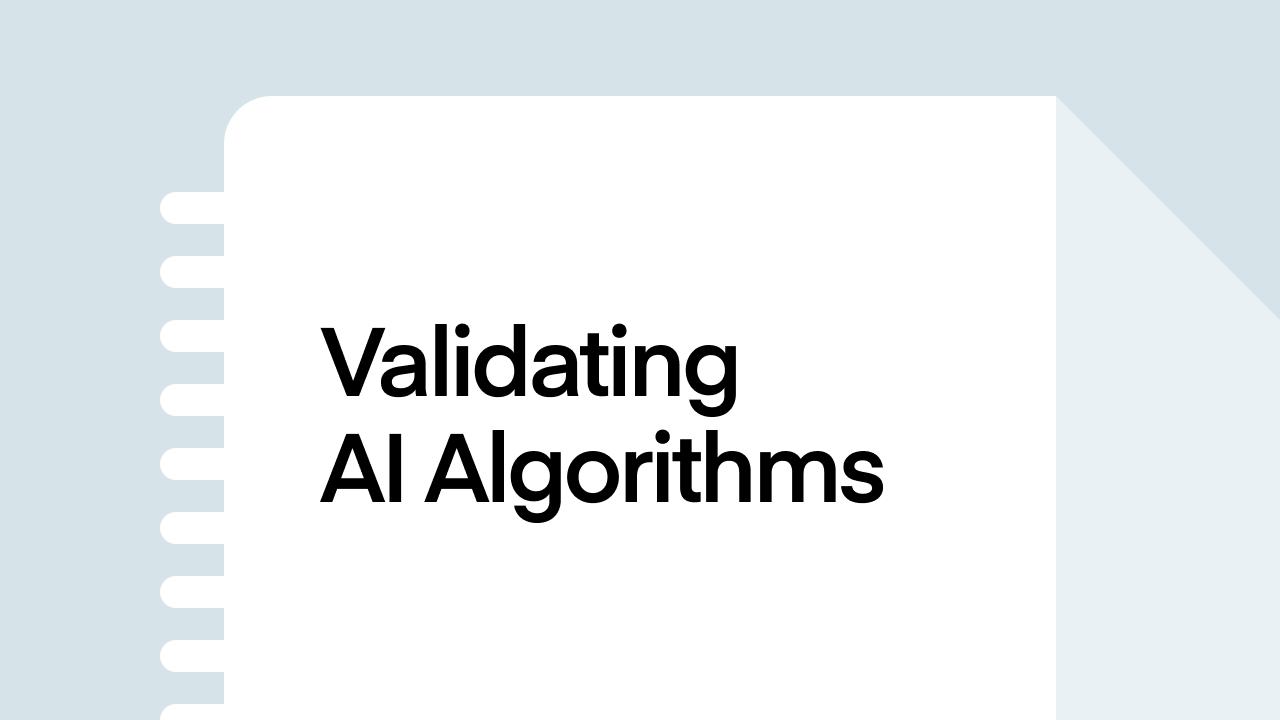 Validating AI Algorithms