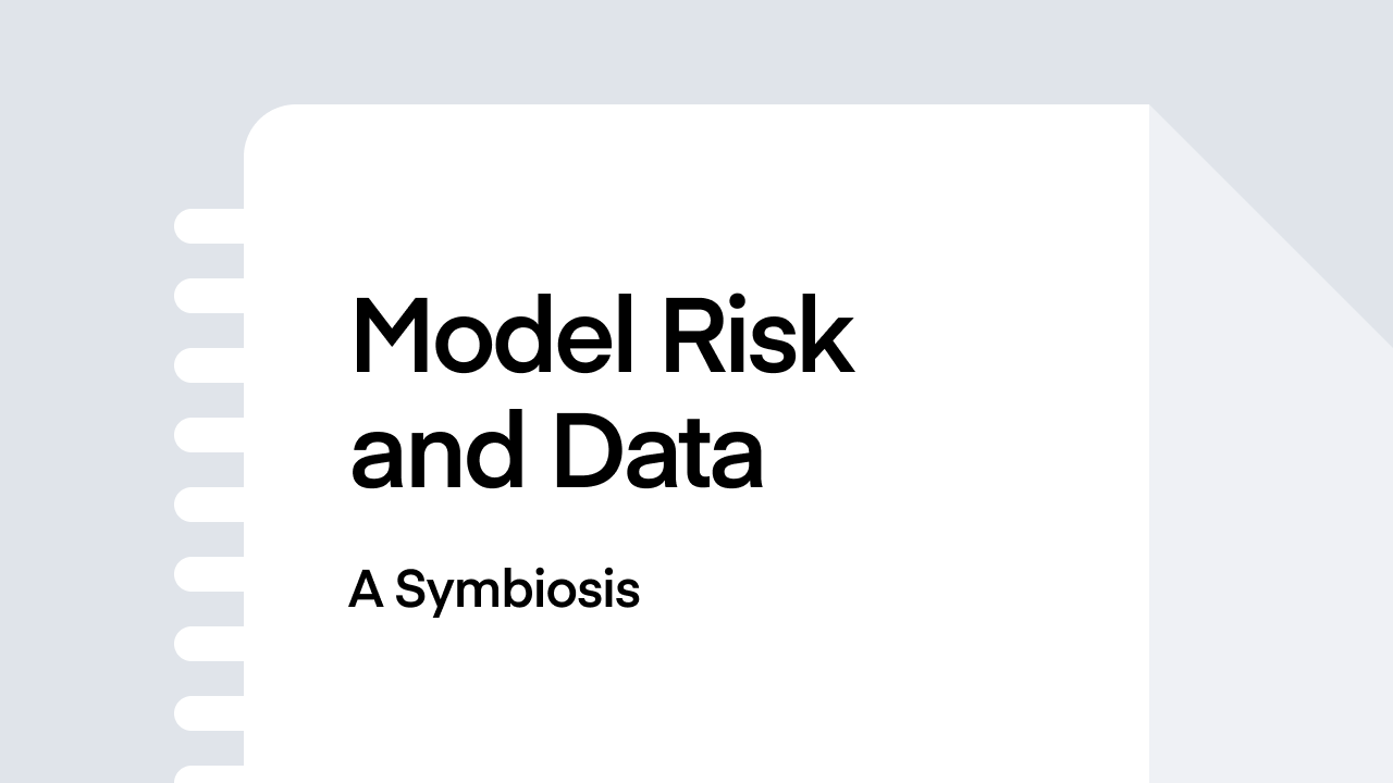 Model Risk and Data – A Symbiosis
