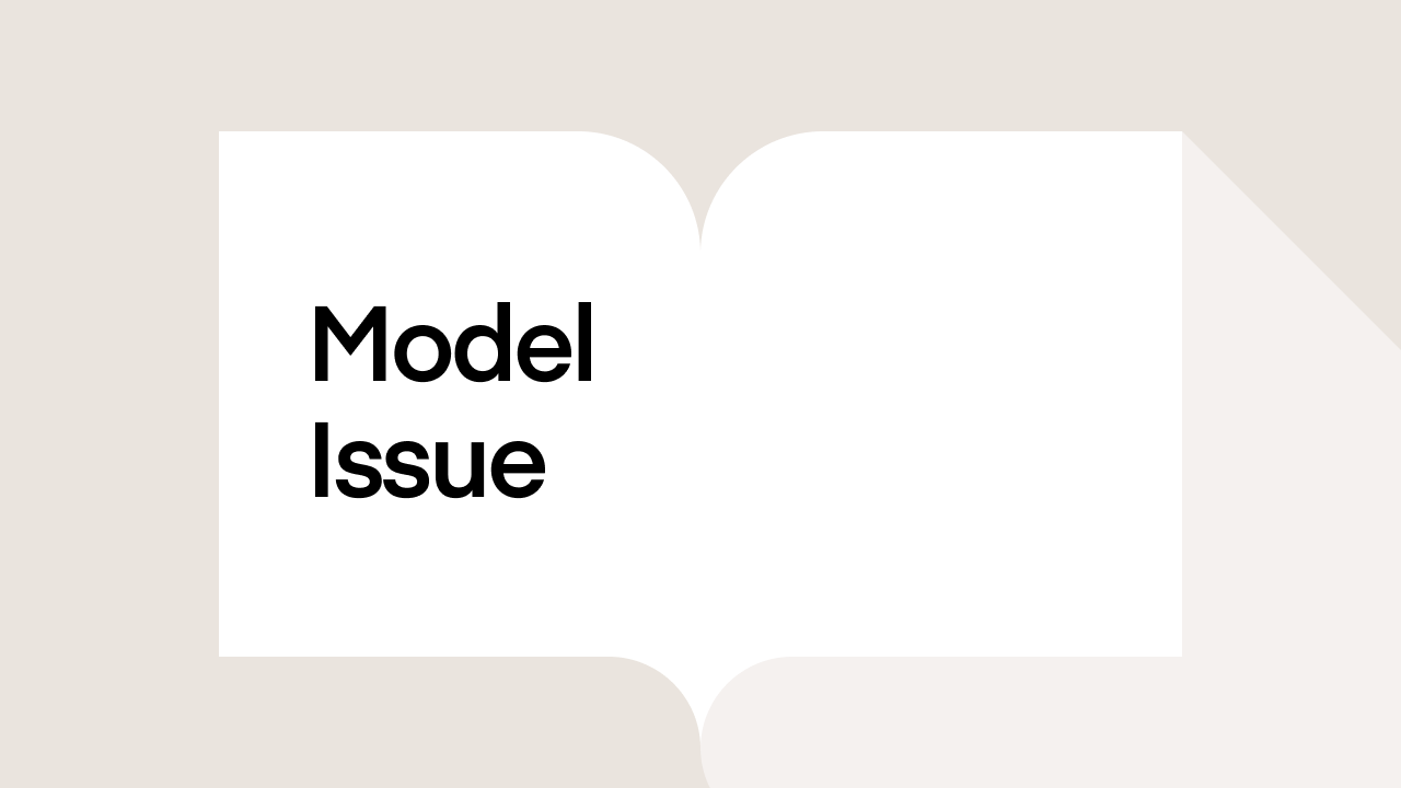 What is Model Issue?