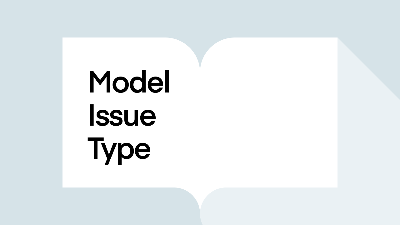 What is a Model Issue Type?