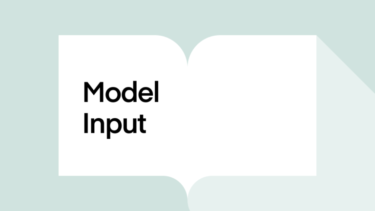 What is model input?