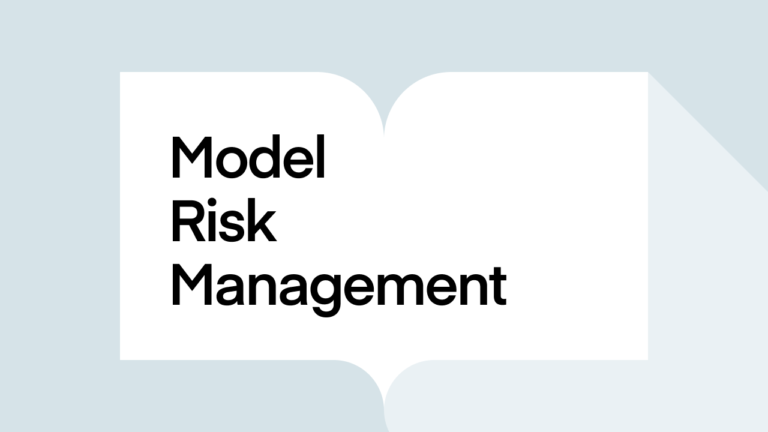 What is model risk management?